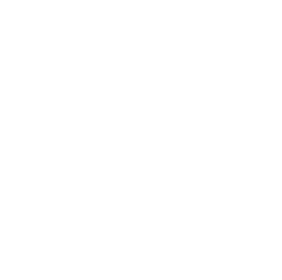 logo_san_fran_strategy_white-W (1)